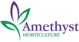 Amethyst Horticulture - planting schemes for urban landscapes | Plant nurseries based in Newnham and Lynsted in Kent